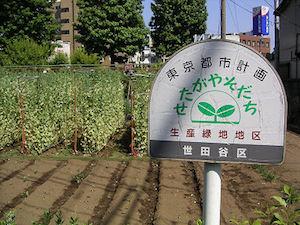 生産緑地画像byいくらチャンネル